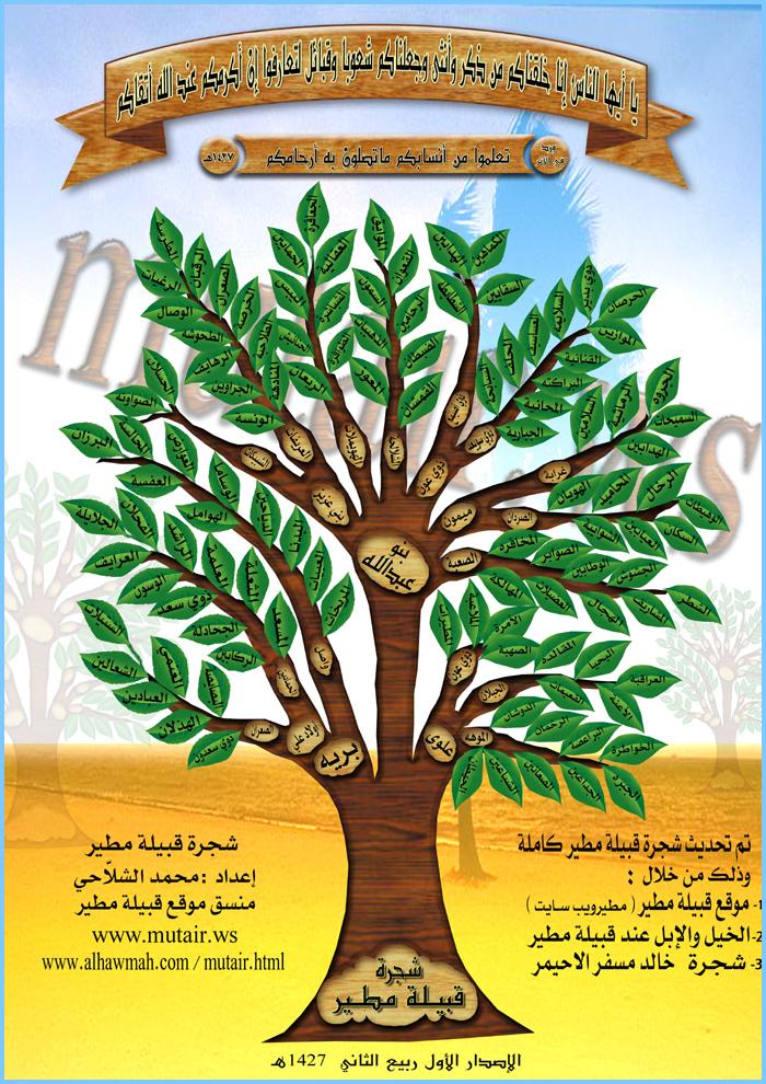شجرة قبيلة مطير
